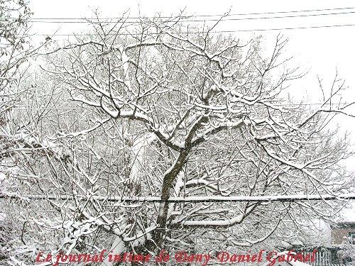 hiver 2010 sherbrooke dany daniel gabriel