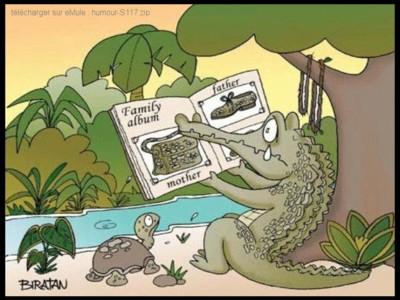humour - images drôles 100226055037952275522345