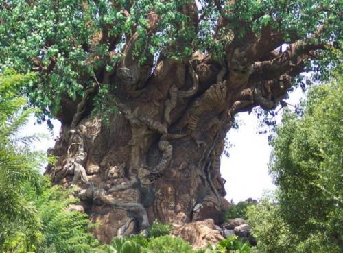 Un arbre qui regroupe un zoo ^^ dans ◤Images 100228020403133815534005