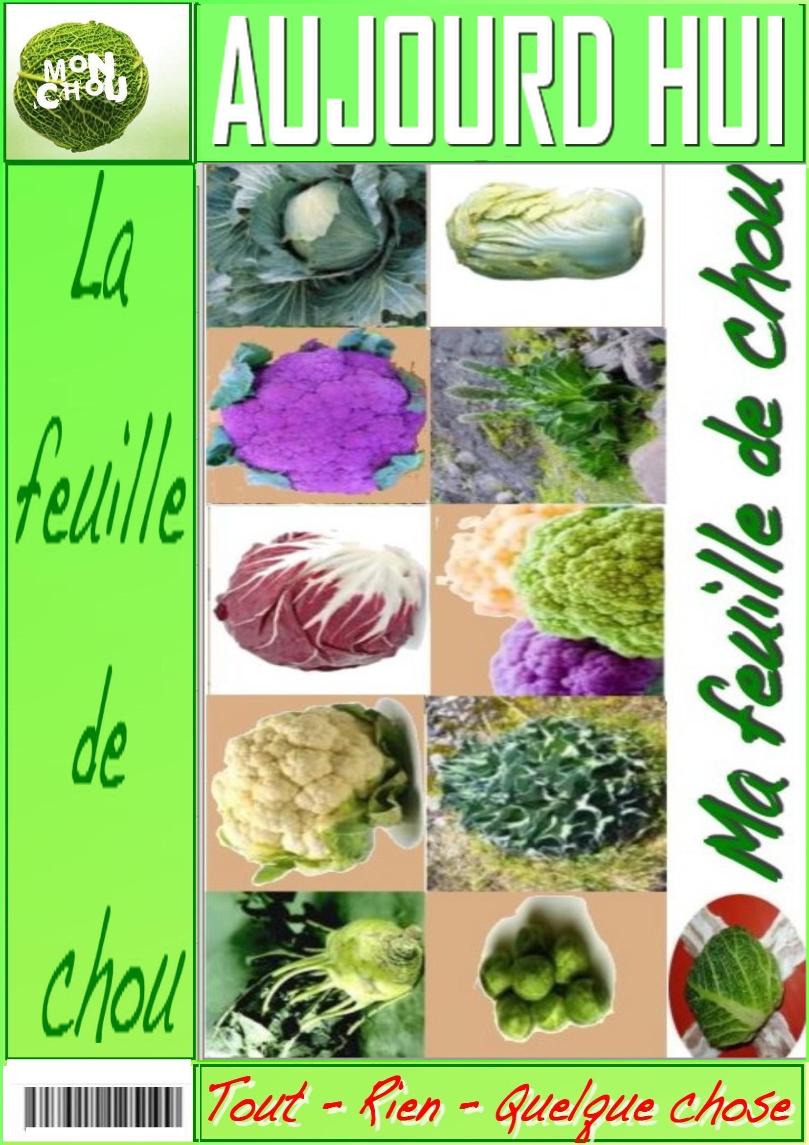 MA FEUILLE DE CHOU dans Mon chou 100325094201984875702420