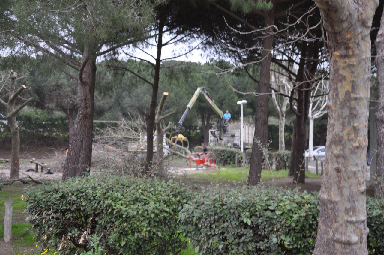 http://nsm03.casimages.com/img/2010/03/26/100326010641885035703581.jpg