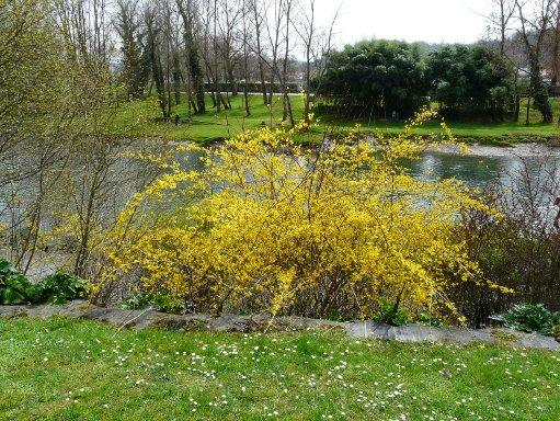 le printemps est la 100328095530123975722949
