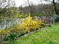 le printemps est la Mini_100328095713123975722992