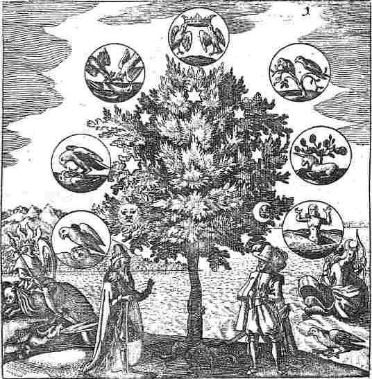 Zodiaque, Hermétisme, et Alchimie 100417085233385005853100