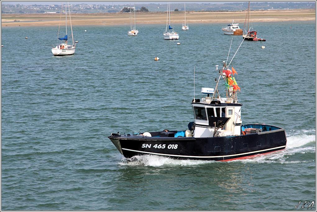 [Activité hors Marine des ports] LE CROISIC Port, Traict, Côte Sauvage... 100427120920743895914380