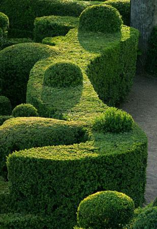100428075044298825925314 dans jardin