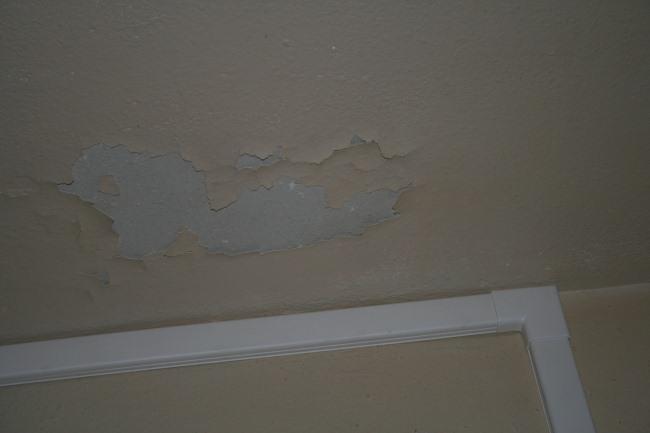 http://nsm03.casimages.com/img/2010/05/19/100519104456390116061407.jpg