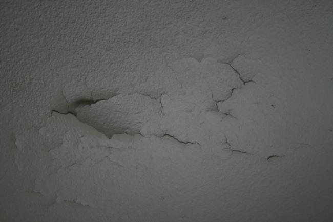 http://nsm03.casimages.com/img/2010/05/19/100519104504390116061408.jpg
