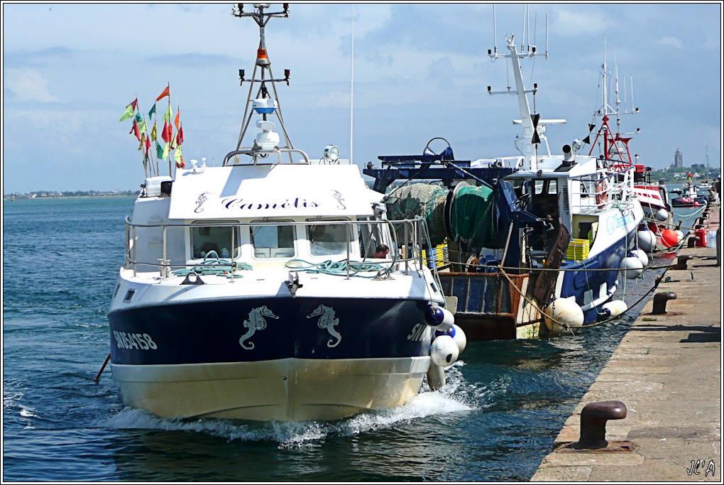 [Activité hors Marine des ports] LE CROISIC Port, Traict, Côte Sauvage... 100526064953743896106898