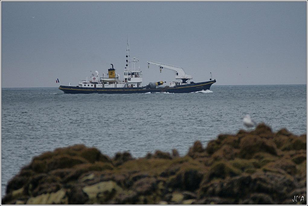 [Activité hors Marine des ports] LE CROISIC Port, Traict, Côte Sauvage... 100611062458743896208594
