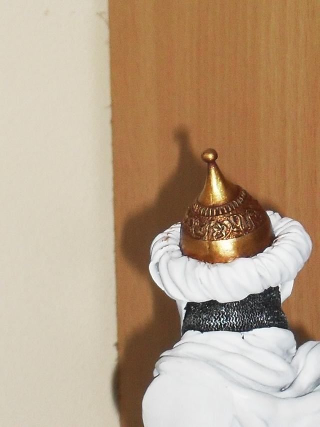 Et hop Saladin en route  100627104106794956309287
