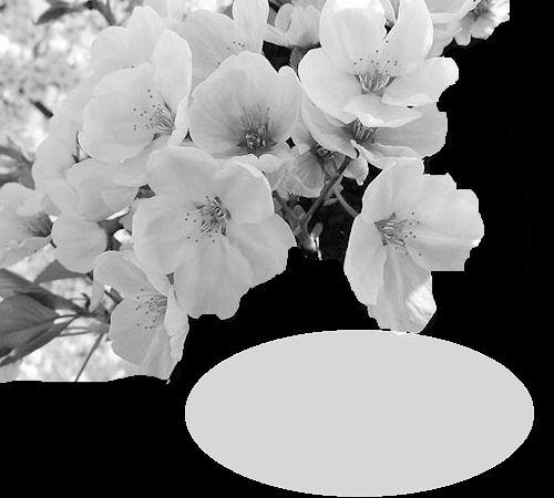 "Créations masque  "" théme cerisier"" - Page 2 1007040229391063506344920"
