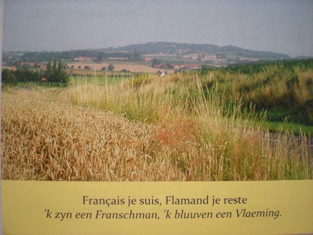 Comité Flamand de France 100705011941970736350550
