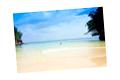 Une île paradisiaque, la Jamaïque