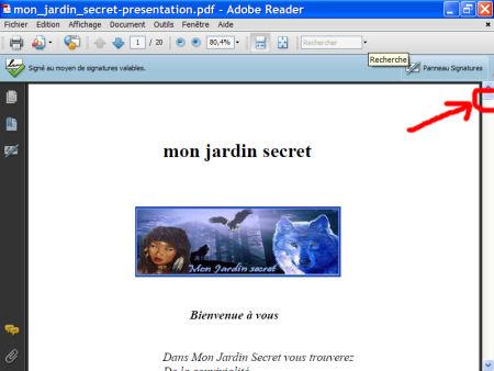 Adobe Reader - le format.pdf 1007281018461135316476546