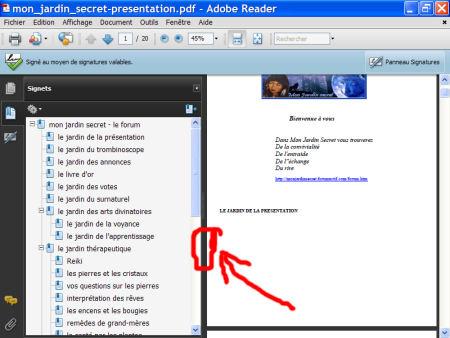 Adobe Reader - le format.pdf 1007281018491135316476547