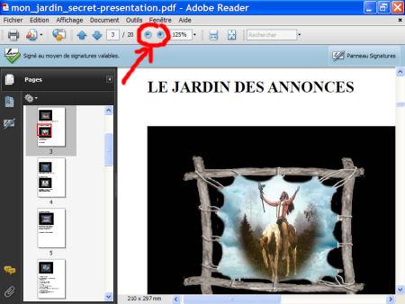 Adobe Reader - le format.pdf 1007281019011135316476552