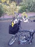 Comment transporter son chien sur son B? - Page 2 Mini_1007280547061136956478933