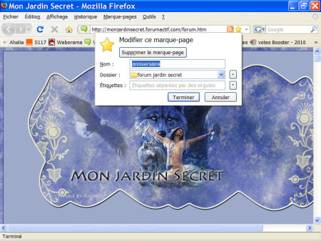 marques-pages (favoris) - FireFox 1007290601021135316481789