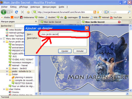 marques-pages (favoris) - FireFox 1007290602401135316481809