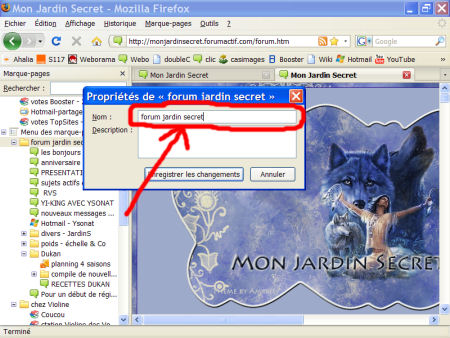 marques-pages (favoris) - FireFox 1007290602471135316481812