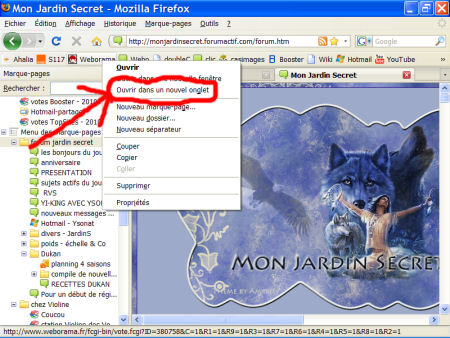 marques-pages (favoris) - FireFox 1007290602541135316481815