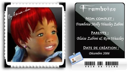 Fiche Framboise Weasley Zabini by Akina-bou