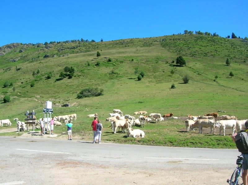[CR] Trois cols dans les Pyrénées 31/07/2010 100802100618671076502268