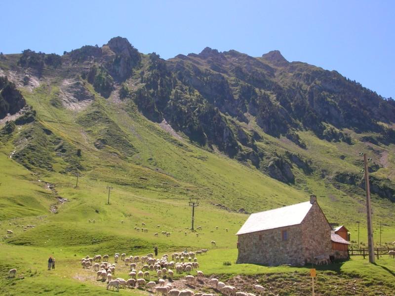 [CR] Trois cols dans les Pyrénées 31/07/2010 100802100624671076502272