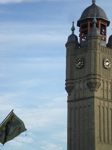 De Vlaamse vlag op onze huizen hangen 100803114207970736513367