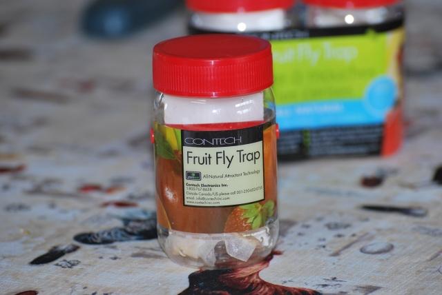 Problèmes de mouche à fruits!!!  Claire!! 100808093656871296533613