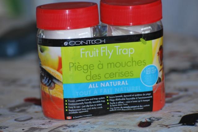 Problèmes de mouche à fruits!!!  Claire!! 100808093752871296533614
