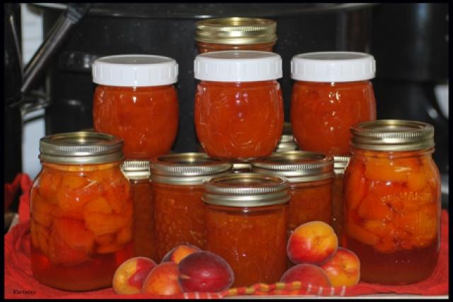 Confiture aux abricots Bernardin 100812012122871296549535