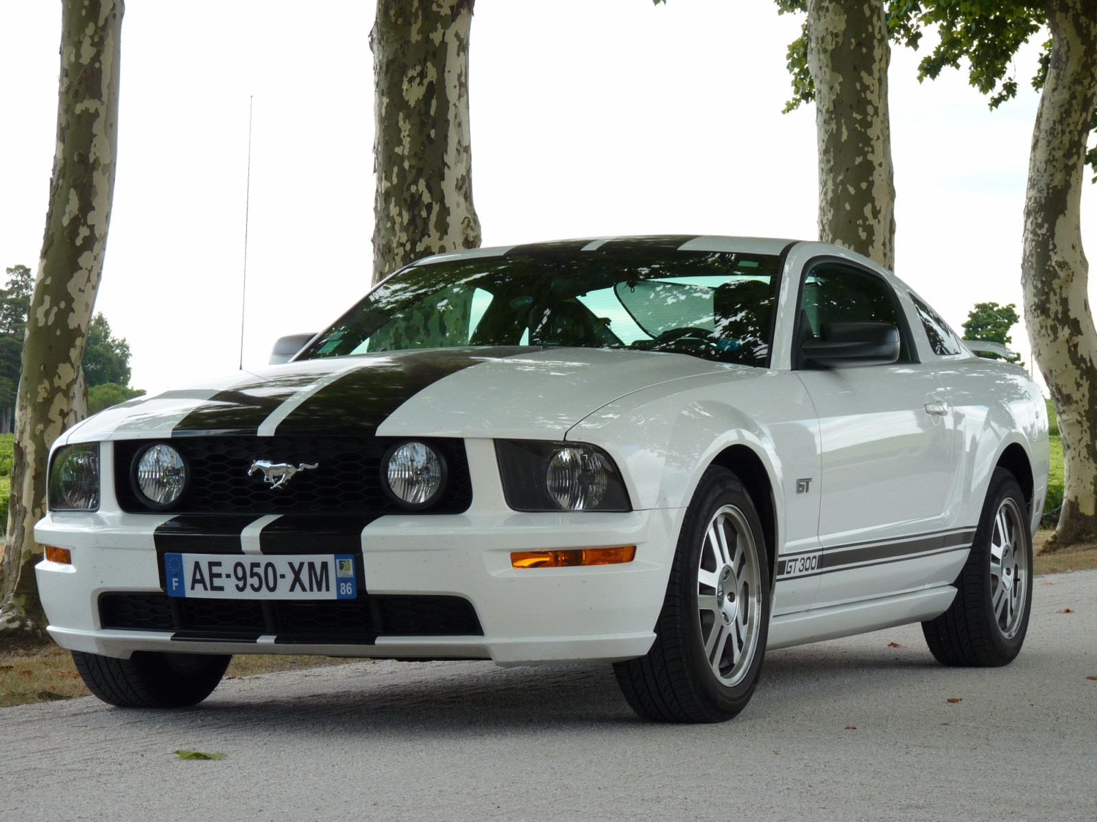 ford mustang gt 2005 vendre vendue ford mustang. Black Bedroom Furniture Sets. Home Design Ideas