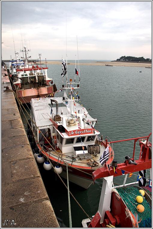 [Activité hors Marine des ports] LE CROISIC Port, Traict, Côte Sauvage... - Page 2 100821024039743896599470
