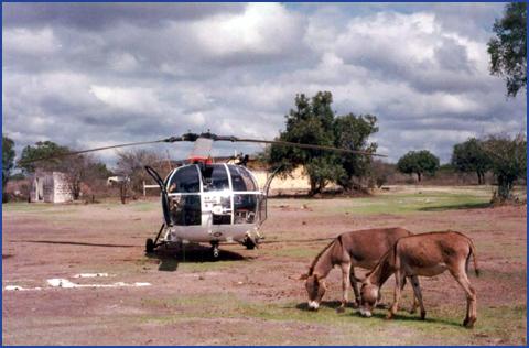 A961 Zinnia - Operation EQUATOR KISS (dec 1992 - jan 94) - Page 5 1008220712341050246610559